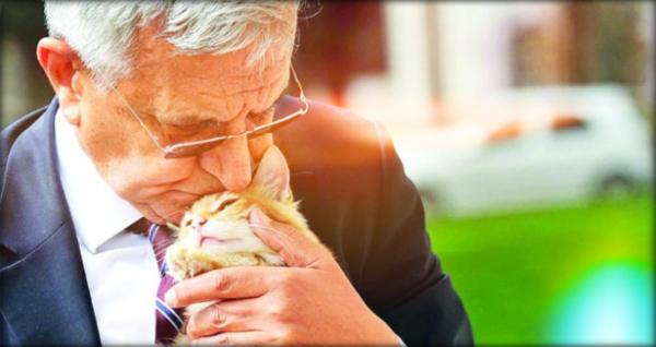 hüseyin hatemi ve kedi